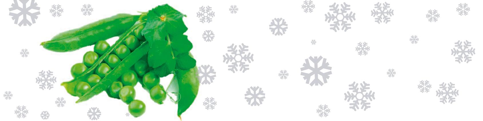 Consuma: Arveja verde